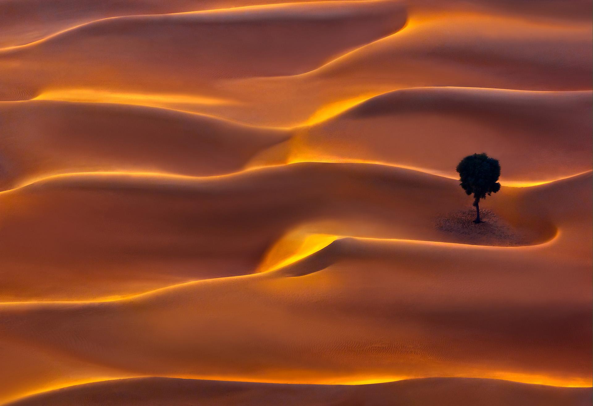 Desert magic.jpg